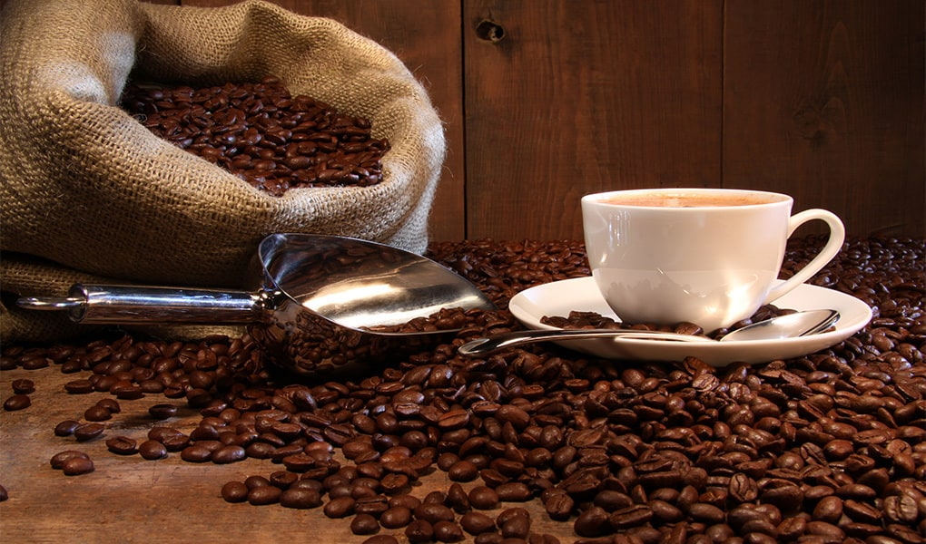 What are coffee beans?